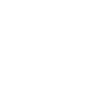 Logo 2G Partner () (Blanco)